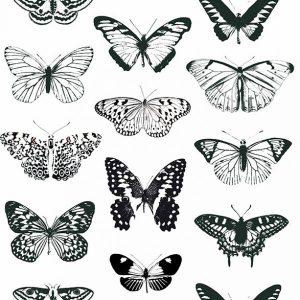 Ασπρόμαυρες Πεταλούδες